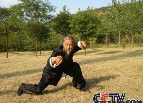 Ci lascia il Maestro Yu Tian Lu